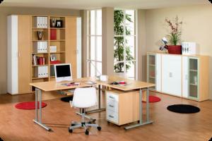 Der ideale Arbeitsplatz zu Hause: Da bin Chef, da darf ich es sein ...