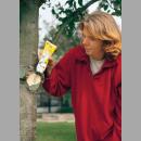 Frische Früchte aus eigenem Anbau - Mit richtigem Obstbaumschnitt besser ernten