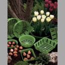 Herbstzeit im Garten: Hauptsaison für Hobbygärtner