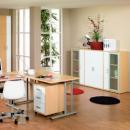 Der ideale Arbeitsplatz zu Hause: Da bin Chef, da darf ich es sein