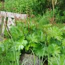 Den Garten mit Gartenmöbeln ausstatten