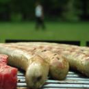 Rauchschwaden und Biergesänge – wenn Grillfreunde nerven