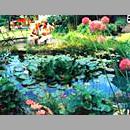 Ein kleines Paradies: Der eigene Gartenteich